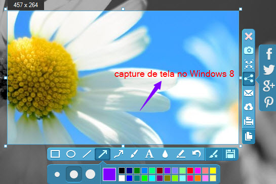 captura de tela no Windows 8